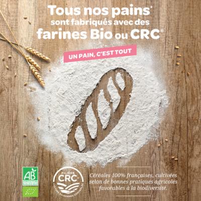 Pains farine Bio ou CRC