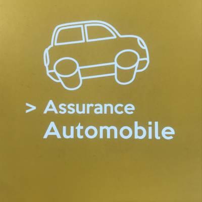 Assurance auto des particuliers et des professionnels