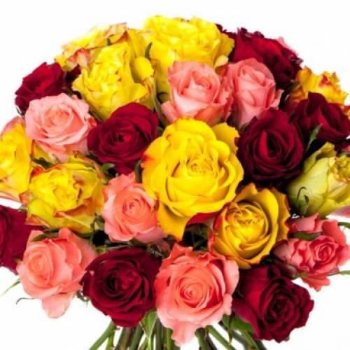 bouquet de rose varier